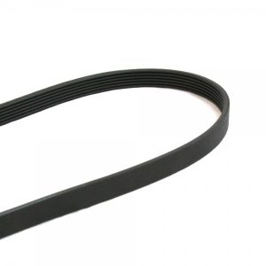 Life Fitness Stepper Drive Belt